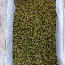 کشمش سبز معمولی Ordinary green raisins